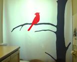 Bird cardinal on a tree  75 thumb155 crop
