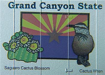 Micro Trains 21381 Arizona State Series