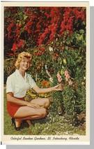 St Petersburg, Florida/FL Postcard, Sunken Gardens - $6.00