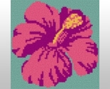 Hibiscus thumb155 crop