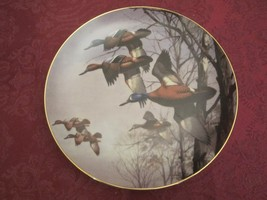 DAVIS MAASS DUCK collector plate MISTY MORNING Water Birds - Blue Winged... - $19.00