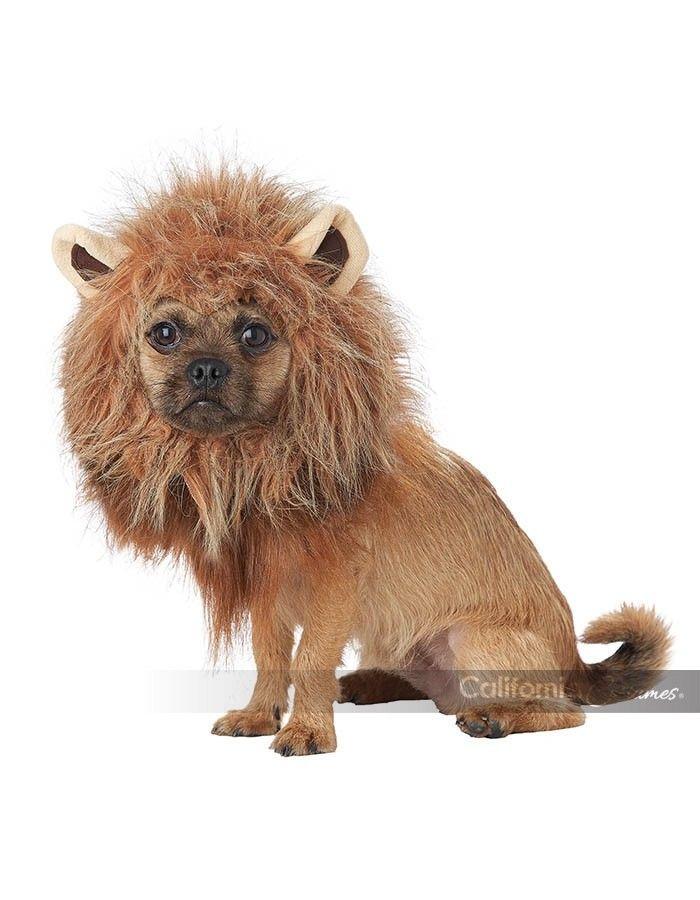 California Costumes King Of The Jungle Lion Dog Pet Halloween Costume PET20166