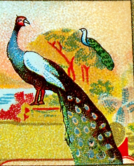 Exotic Litho! Peacock and Parrot Dye Label, 1890's