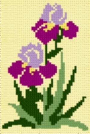 Irisblossoms
