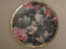 CEDAR WAXWING collector plate SPRING RAIN Alan Sakhavarz BIRD Songbird - $23.99