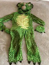 Underwraps Boys Green Yellow Fleece Triceratops Dinosaur Costume 18 Mont... - ₹1,719.11 INR