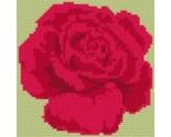 Rose thumb155 crop