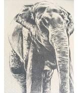 10 Elephant Note Cards Notecards Envelopes Detroit Zoological Society - $10.05