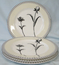 Charter Club Tuilleries Cream Floral Salad Plate set of 4 - $60.28