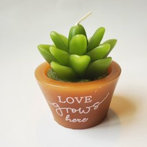 """Succulent Shaped Candles, 2.6"""", Love Grows, Happy Place, Live What You Love image 3"""