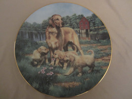 GOLDEN RETRIEVERS collector plate ROBERT Bob CHRISTIE Sporting Dogs HUNTING - $49.00
