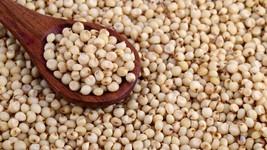 Organic Whole Sorghum , Jowar , Juar , Indian Cholam , Grains & Herbs , ... - $4.99+