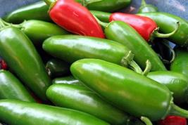 25+ Early Jalapeno Pepper Seeds, Heirloom, Country Creek LLC, Non-GMO, Spicy & D - $2.99