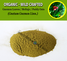 POWDER Gnemon Leaves Melinjo Paddy Oats Gnetum Gnemon Organic Wild Craft... - $7.85+