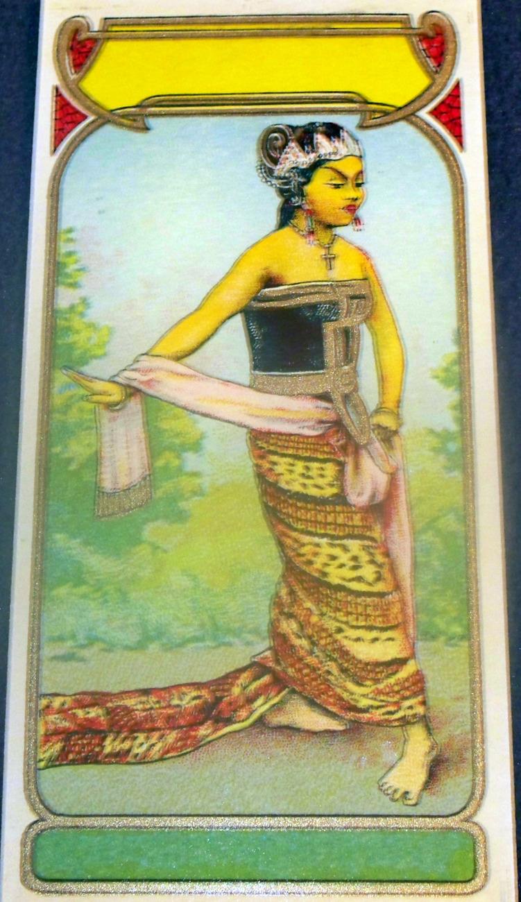 Royal Litho! Princess Dye Label, 1890's