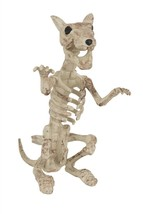 Skeleton Rat, Halloween Party Accessory Prop/Room Decoration - $6.19
