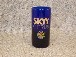 Skyy Citrus Cobalt Blue Shooter - Fabulous Item! - $7.99