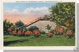 Unusual ST PETERSBURG, FLORIDA/FL POSTCARD, Shell Mound - $4.00
