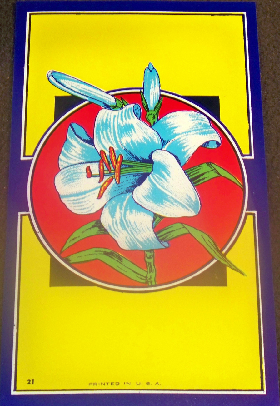 Lithograph Wild Lily Broom Label, 1940's