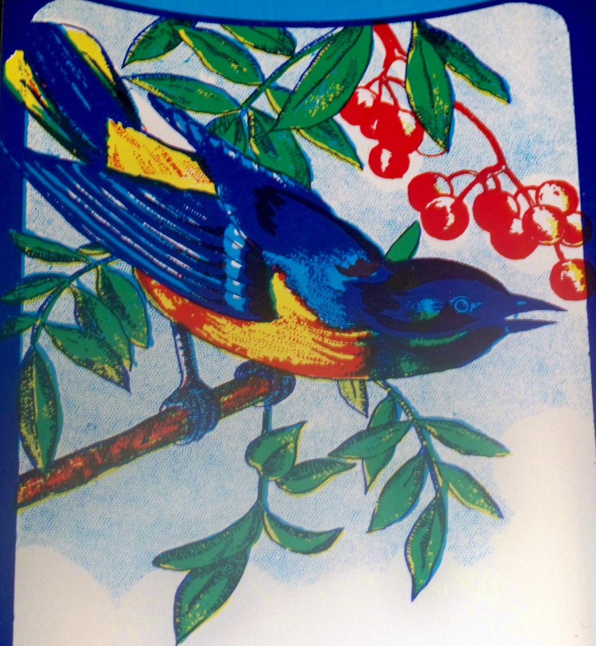 Blue bird broom label 002