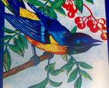 Blue bird broom label 002 thumb155 crop