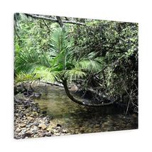 Canvas Gallery Wraps - US Made - CG Pro Prints in 2 days - Rio Sabana - ... - $17.00+