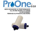 """Propur ProOne G2.0 Water Filter Elements 9""""  Set of 2 - New"""