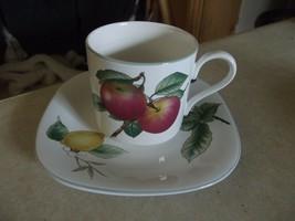 Studio Nova Harvest Grove cup and saucer 7 available - $3.22