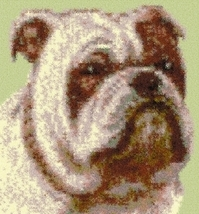 Latch Hook Rug Pattern Chart: Bulldog - EMAIL2u - $5.75