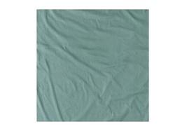 Cocoon CoolMax Blanket Sage - $37.12
