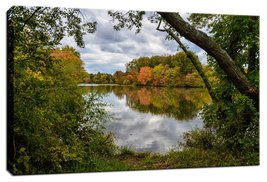 An item in the Art category: Landscape Photo Lost In Autumn Color Fine Art Canvas & Unframed Wall Art Prints