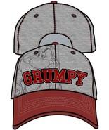 Disney Grumpy Grumpier Grey and Burgundy Mens Hat Cap - $14.65
