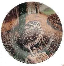 Danbury Mint Wedgwood owl Plate The Majesty of Owls Little Owl Trevor Boyer CP15 - $38.21