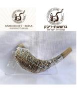 "Jerusalem Old City silver plated rams' ram horn shofar 14""-16"" kosher Fr... - $153.99"