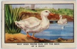 Why Water Runs Off A Duck's Back Feathers Oil  1930s Ad Trade Card - $4.94