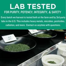 Jade Leaf Matcha, Organic Japanese Culinary Grade, Powdered Tea,  0.7 Oz image 4