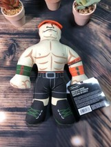 1 Count Petmate WWE John Cena Plush With Squeaker Inside Toy For Dogs CE... - £7.96 GBP