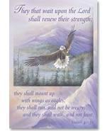 Isaiah 40:31 Flex Magnet by Leanin' Tree - $8.00
