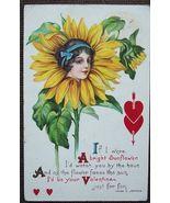 PC Stegher Helen Jeffers Sunflower Valentines Day 1916 - $7.95