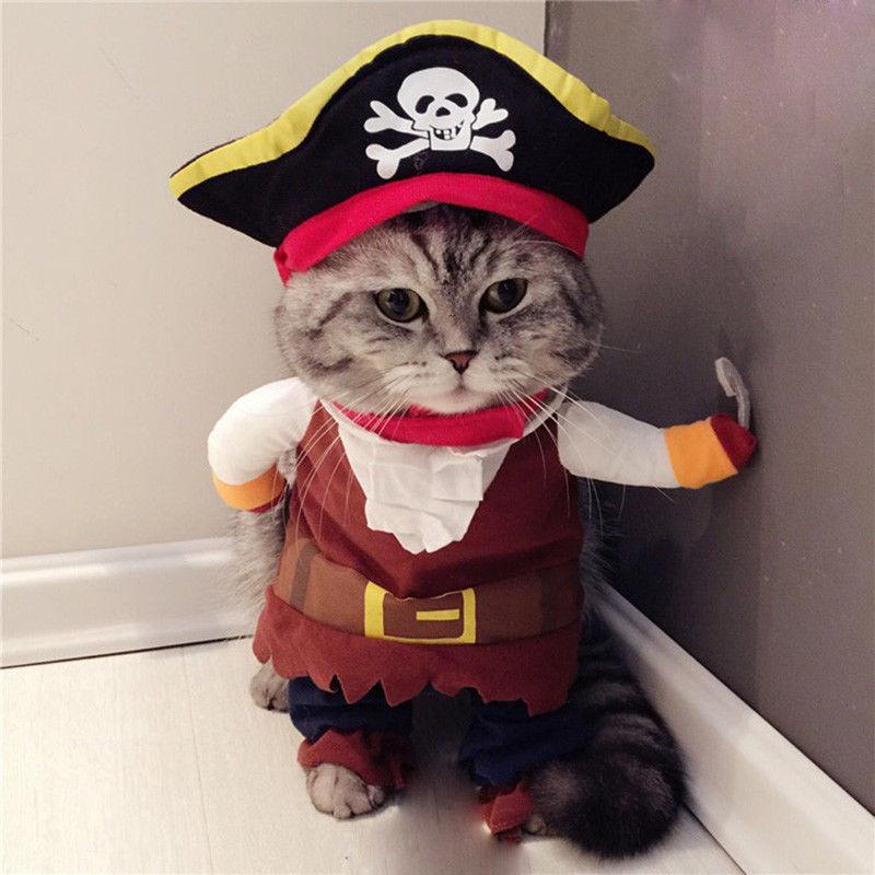 Holapet® Cat Costume Pirate Suit Clothes Corsair Halloween Puppy Suit