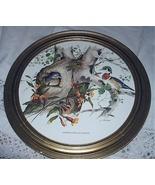 J.LOCKHART-Wood Ducks-Lovely Round Vintage Frame Birds in Tr - $85.00