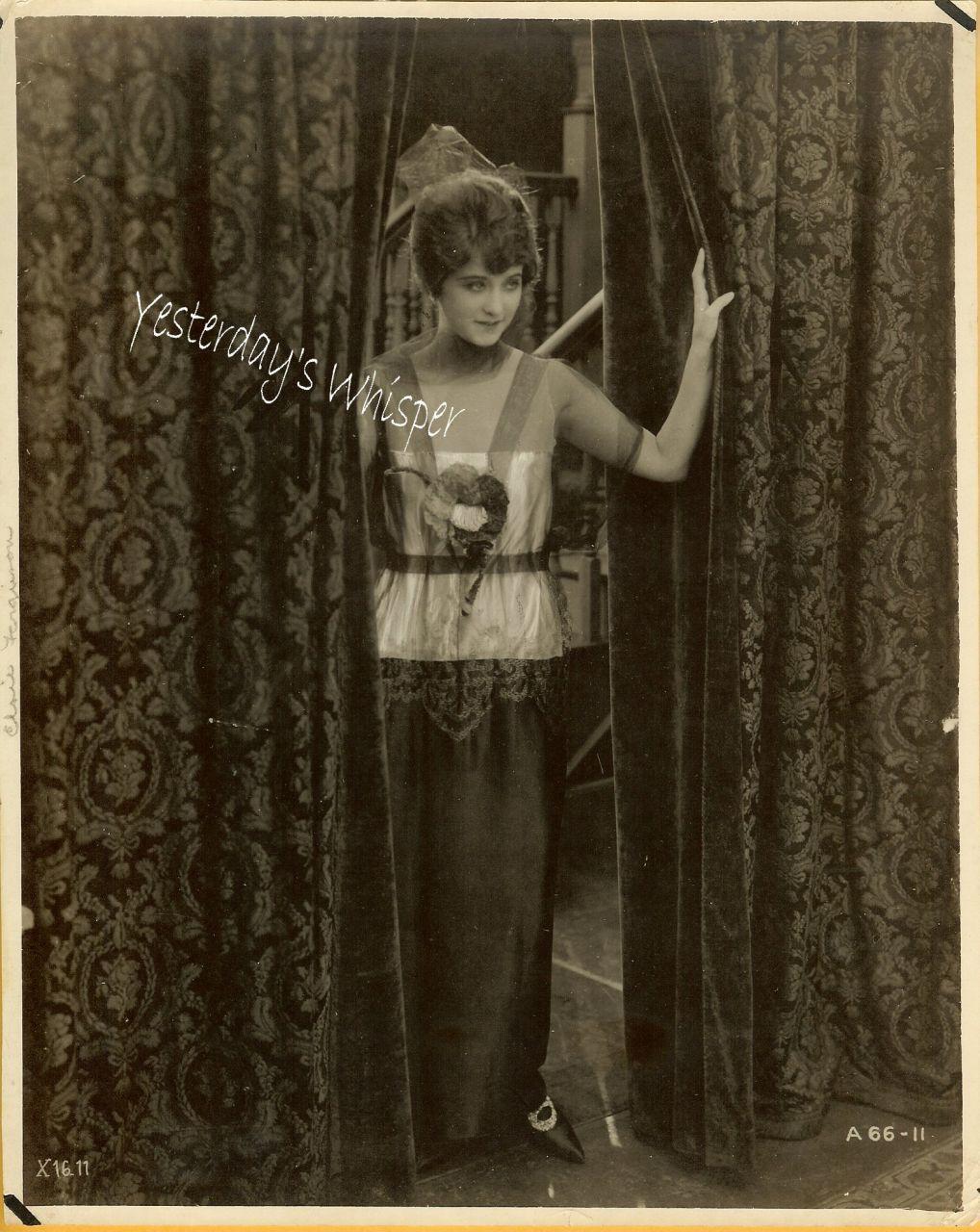 Elsie Ferguson c.1919 Photo Magnifcent Period Dress