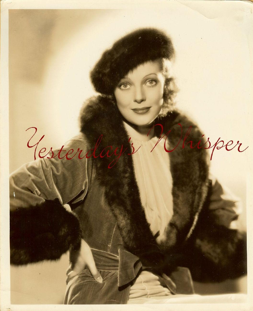 Loretta Young Hollywood Gamour Fur Original Otto Dyar Photo