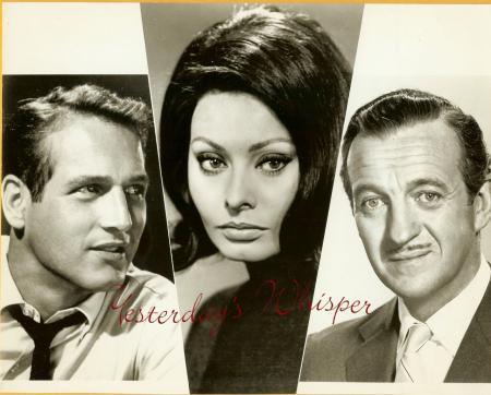 Paul Newman Sophia Loren David Niven Vintage 1965 Photo