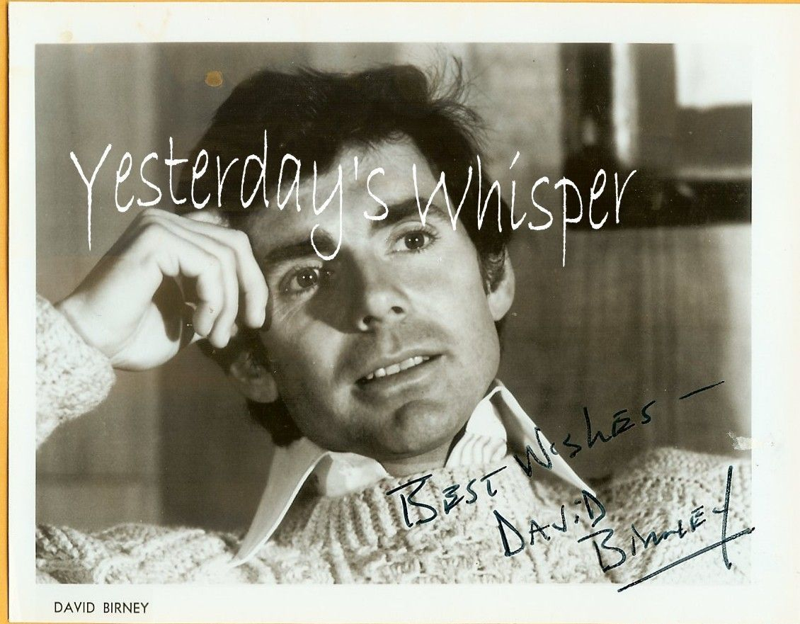 David Birney Signed Publicity Promo Glossy Photograph