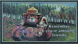 Micro Trains 03200404 Smokey Bear 50' Boxcar 1980A - $24.25