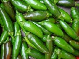 Sow No GMO Pepper Serrano Hot Mexican Chile Capsicum Annuum Non GMO Heirloom Gar - $3.73