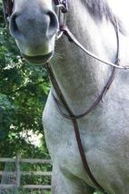 ProAm Raised Fancy Stitched Standing Martingale - $49.99