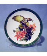 Danbury Mint Flickers Collector Plate 1990 Songbirds of RT Peterson - $14.99