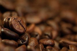 Free Coffee - Buy 2 lbs Tampa Bay Blend and get 1/2 lb of Costa Rica SHB Free - $23.71